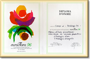 Euroflora certificate of Honour (click to enlarge)