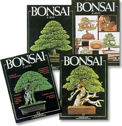 Le riviste di bonsai di crespi editori bonsai news for Vendita on line bonsai